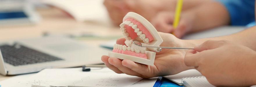 Etudes dentaires au Portugal